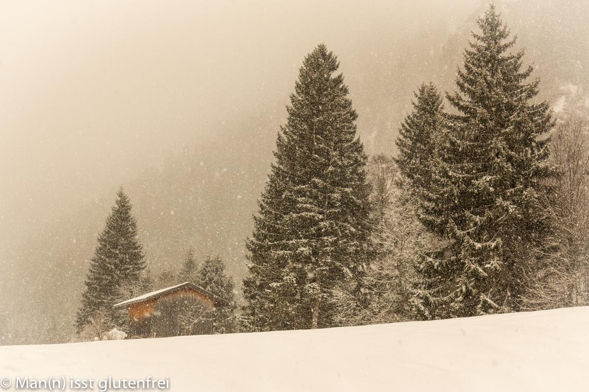 Schneefall Sepia